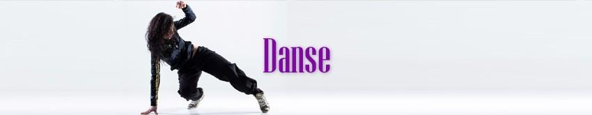 Spectacles de Danse événementiel   RueduSpectacle.com