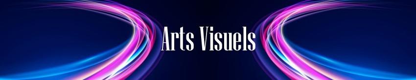 Arts Visuels en événementiel   RueduSpectacle.com